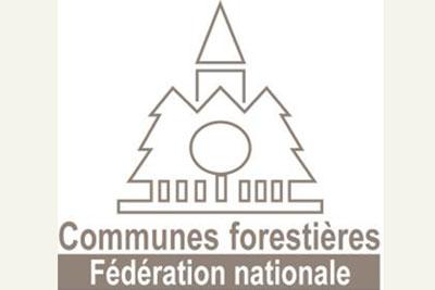 LogoFNCOFOR