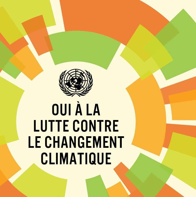 Changement climatique: Des experts internationaux plaident pour les investissements verts