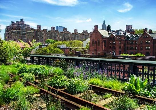 Installer des potagers sur les toits pour une ville for La nature en ville